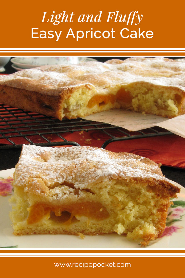 8ca8a346f54a Easy canned apricot cake